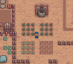 Harvest-moon-jack-potato-turnip