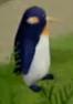 Tot penguin.png
