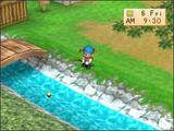 Fishing (BTN)