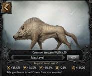 Western Wolf