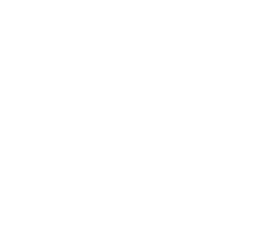 Team Cherry Logo.png