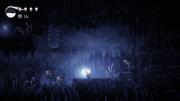 Screenshot HK Hollow Knight Beta 16.png