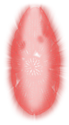 Grimm Shield.png