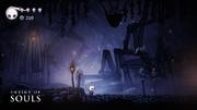 Screenshot HK Hollow Knight Beta 05.png