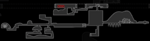 Mapshot HK Aspid Hunter 01