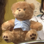 Isaac's Bear (Harry's Murder) -Front-