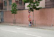 Osmanthus Road----(2014 11)