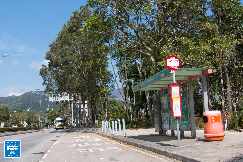 大埔海濱公園 (完善路)
