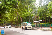 Yan Shing Court Minibus Terminus 20160615