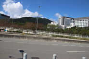 20200226 Ma Liu Shui Ferry Pier NB
