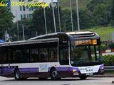 愉景灣巴士T4線