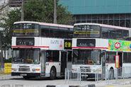 Kowloon City Ferry Pier New 75X 2