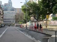 Shing Tak Street BT2 20200106