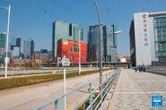 Kai Tak Bridge 20210223