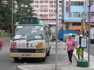 Tsuen Wan Tso Kung Street 5