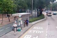 SheungShui-SheungShuiGovernmentSecondarySchool-1398