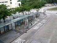 Bus Stop Loop on Scenic Road1 20180412