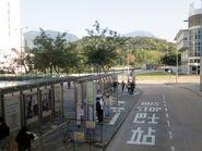 Bus Stop Loop on Scenic Road 20180310