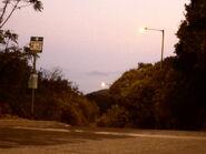 Tung Chung Road Country Park (1)