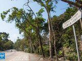 大埔公路 (沙田嶺段)