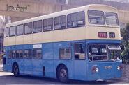 NWFB389-2