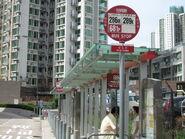 Po Tai Street 5