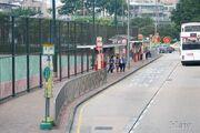 KowloonCity-ArgyleStreetPlayground-8990