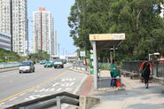 Lam Tsuen River Side-1