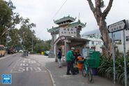 Wang Toi Shan Fan Kam Road 20190114 3