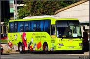 LE7785-SunshineCity Shuttle Bus