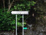 大埔公路 (大埔滘段)