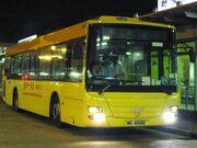 Huangbus-24