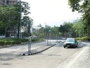 Tai Po Tau 20131117-3