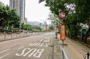 Tsuen Wan Park S 20170423