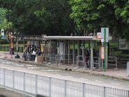 Tin Shui Estate S