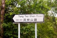 Tung Tsz Shan Road 20160408