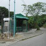 Sha Kiu Tsuen 2.JPG