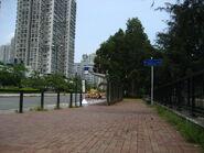 Tai Po Tai Wo Road-W