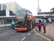 16 Big Bus blue route 8