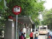 Shui Lau Tin 3