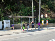 Tai Tam Reservoir Road1 20190213