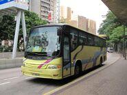 NR41 LF9905