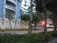 Tsing6 TsingKing