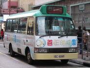 Hoi Pui Street 4