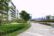 Shing Kai Road outside EMSD Headquarters 201804 -2