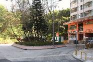 Tsui Ping S Est-1