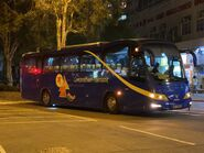 NH3383 Concord Bus NR101 01-02-2021