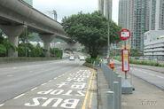MaOnShan-HangFaiStreet-7287