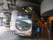 LY356 60M