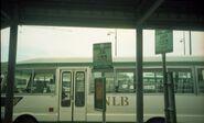 NLB 36 and 36P bus stop